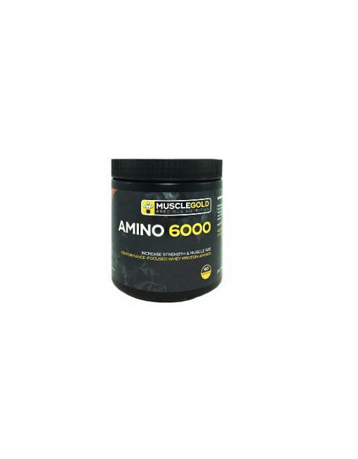 پودر مکمل آمینو 6000 ماسل گلد